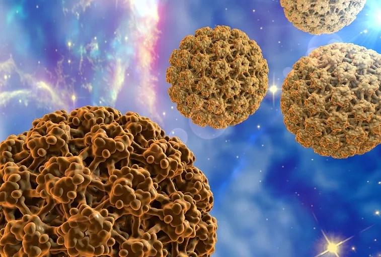 Az emberi 6-os herpeszvírus = Human herpesvirus 6 - Repository of the Academy's Library