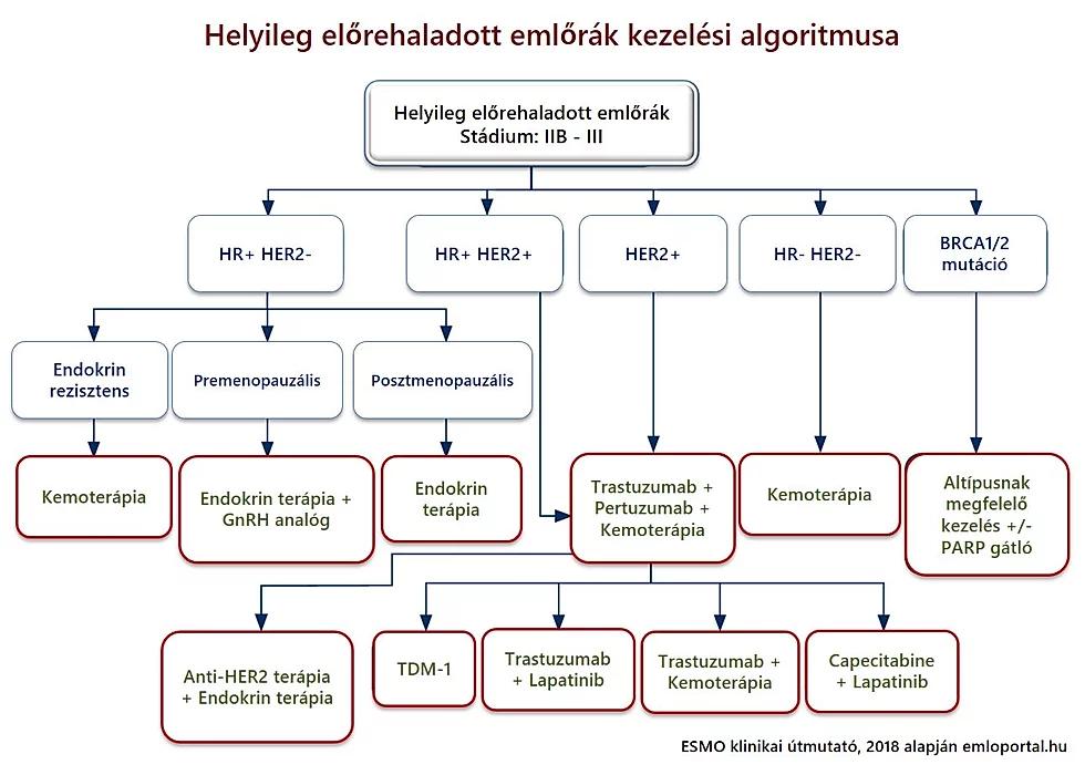 Magyar Onkológusok Társasága - Az emlőrák szisztémás kezelése: szakmai útmutatás