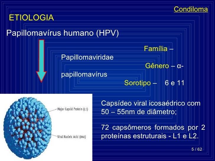 papillomavírus behandlung