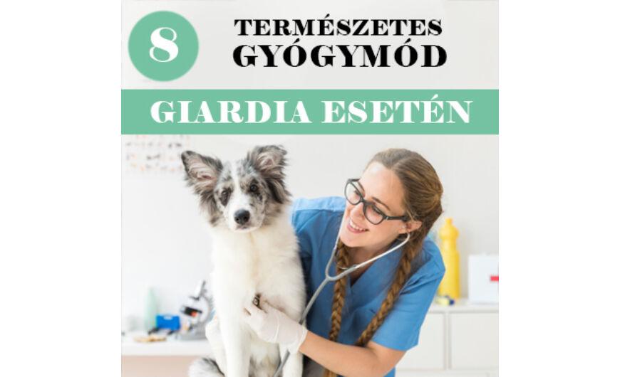 giardia kutya ember