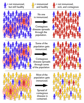 humán papillomavírus vakcina francia nyelven a hpv pozitív rákot jelent
