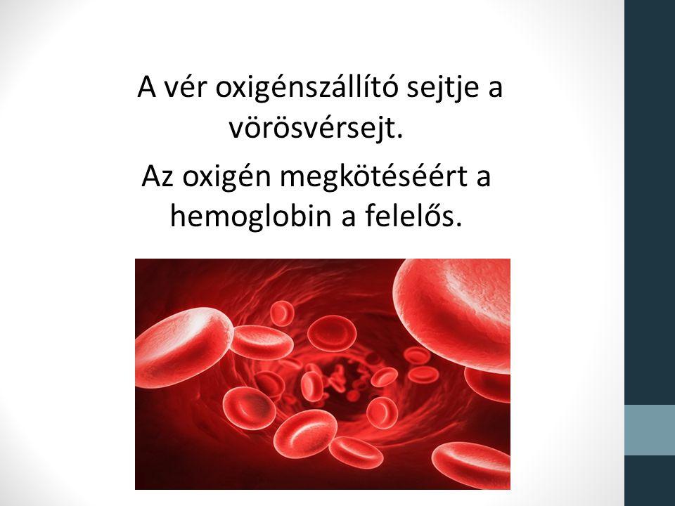 vérszegénység 10 hemoglobin