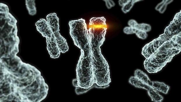DeltaGene diagnosztika - Öröklődő daganat teszt