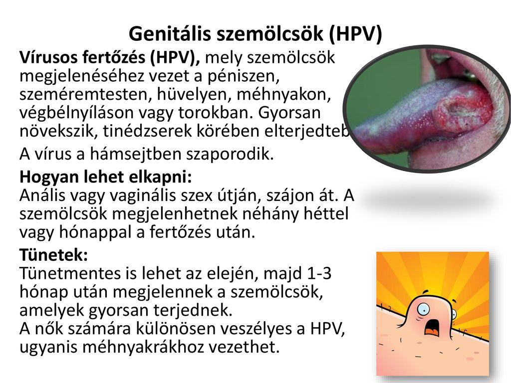 hogyan jelennek meg a genitális szemölcsök?