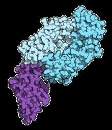 papilloma vakcina vírus és maximuma méregtelenítő kiegészítők ammóniával