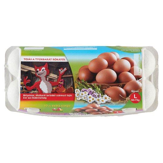 tojástípusok schistosomiasis